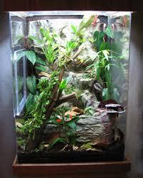 acrylic terrariums