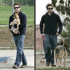 celebrity dog breeds