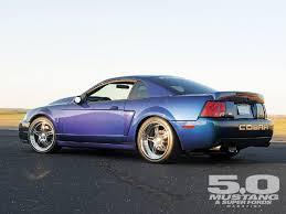04 cobra bumper