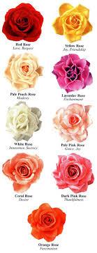 colors rose