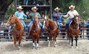 rancheros visitadores