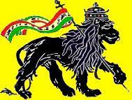 leones rastas