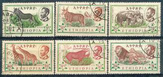 animal in ethiopia