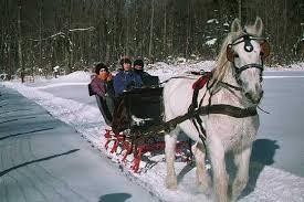 one horse open sleigh