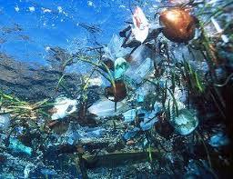 polluting ocean