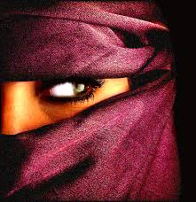 arabian veils
