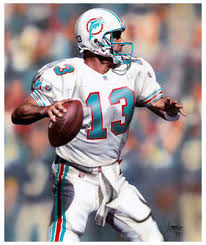 miami dolphins player
