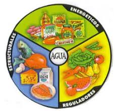 alimentos reparadores