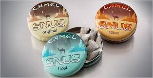 camel smokeless tobacco
