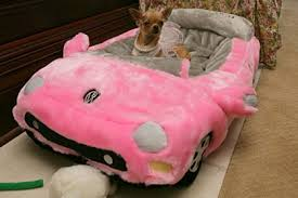 dog car bed