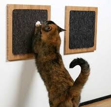 cat scratching pads