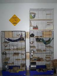 homemade chinchilla cage