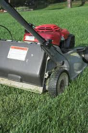 lawn mowing techniques