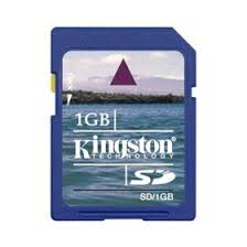 kingston 1 gb sd
