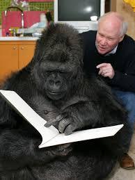 extinct apes