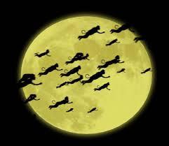 flying monkeys wizard of oz