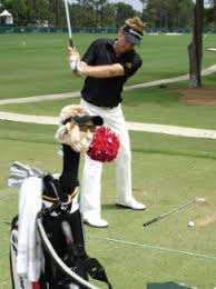 ian poulter head cover
