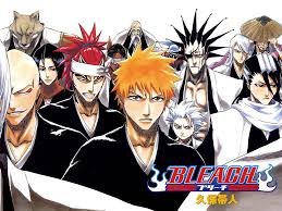 bleach graphic novel