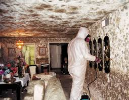 house molde