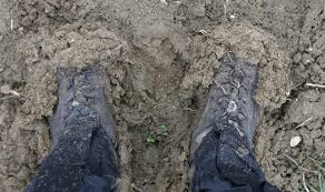 boots muddy