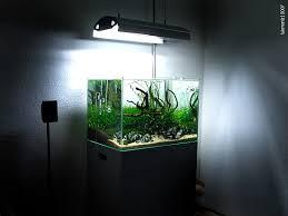 style tank