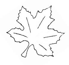maple leaf shape