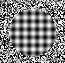 illusion books