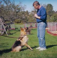 dog training hand commands