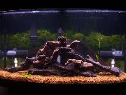 fish tank installation