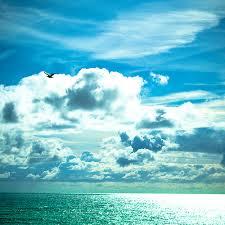 horizon mer