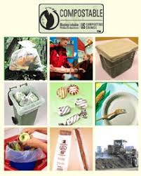 biodegradable products
