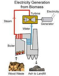 how biomass works