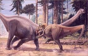 allosaurus vs diplodocus
