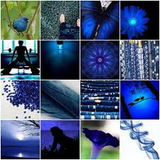 colour indigo