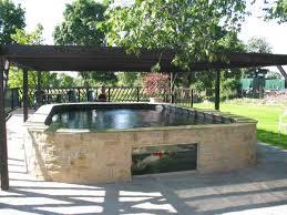 koi pond pictures