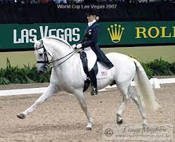 olympic dressage horses