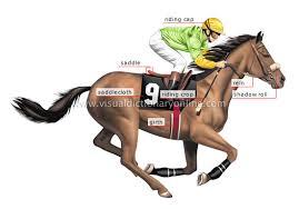 jockey racing