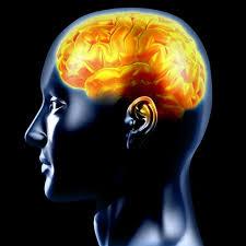 epilepsy images
