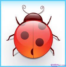 ladybug draw