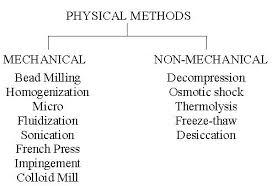 cell homogenization