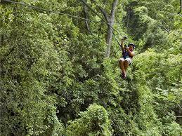 canopy honduras