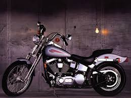 motorcycle pictures harley