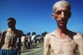 bosnia genocides