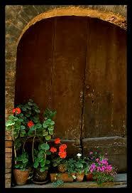 ital flowers