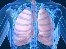 breathing lungs