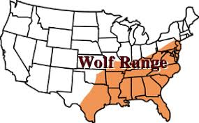 red wolf map