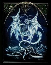 pics of dragon