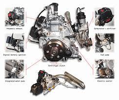 rotax max 125cc