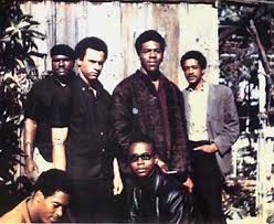black panthers pictures