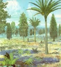 jurassic plants